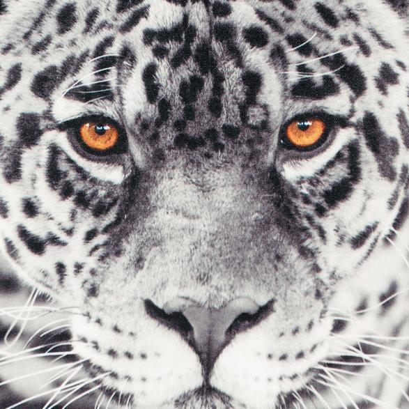 TIGER IN BLACK KANVAS TABLO 60X90CM