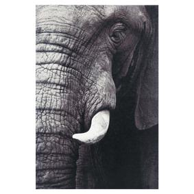 ELEPHANT IN BLACK KANVAS TABLO 60X90CM