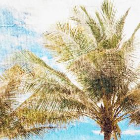 PALM TREES DOKULU KANVAS TABLO 60x90 CM