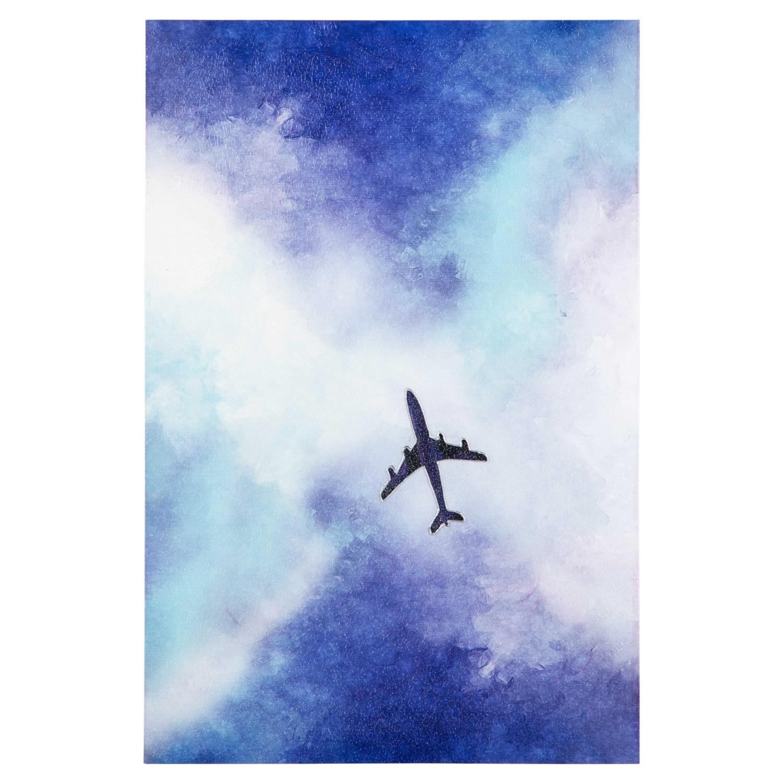 FLYING PLANE DOKULU KANVAS TABLO 60x90 CM