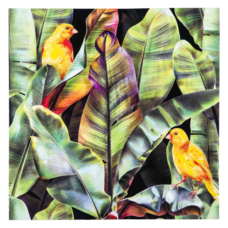 TROPICAL BIRDS YAĞLI BOYA TABLO 80x80 CM